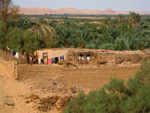 Оазис Бахарея, Египет