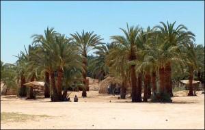 Оазис Харга, Египет