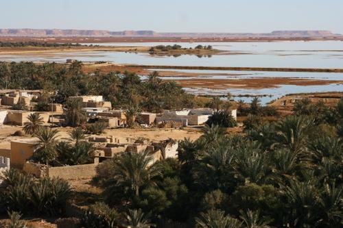 Оазис Сива Египет