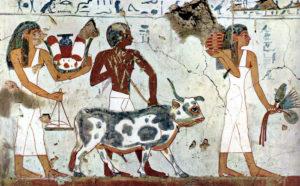 зернохранилища древнего египта