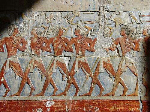 Экспедиция царицы Египта Хатшепсут в Пунтфото