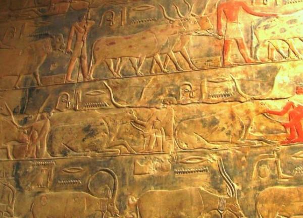 Гробница фараона Египта Тети фото