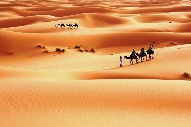 Пустыня Ливии - Сахара фото