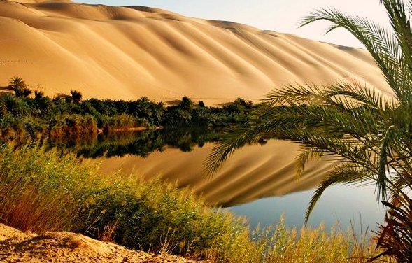 Оазис Ливии Куфра фото