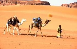 Население Ливии фото
