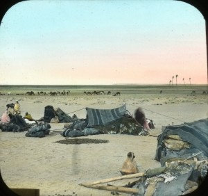 Egypt_Bedouins_Pasturing_Camels_Abusir