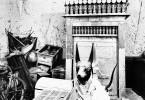 Сокровища гробницы Тутанхамона. 1924 год фото