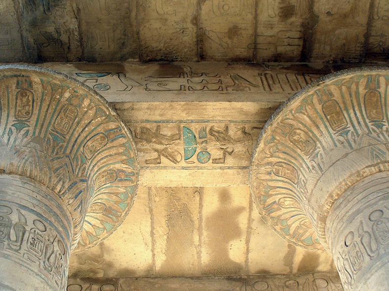 лотус древнего египта фото
