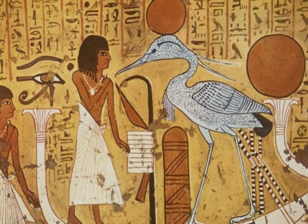 феникс египет фото