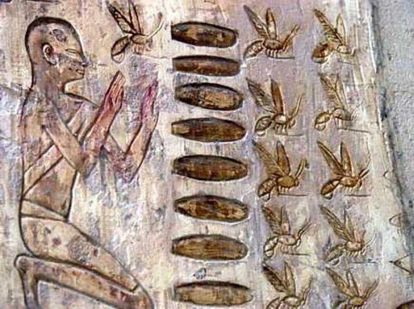 Пчелы в древнем мире