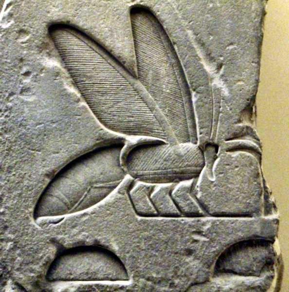 Пчелы в древнем египте