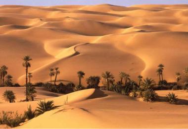 Оазис Египта