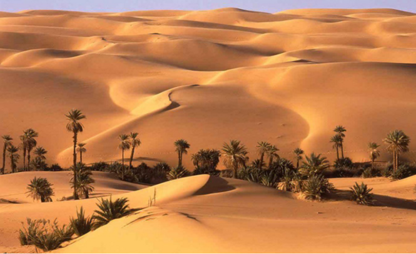 Оазисы Египта