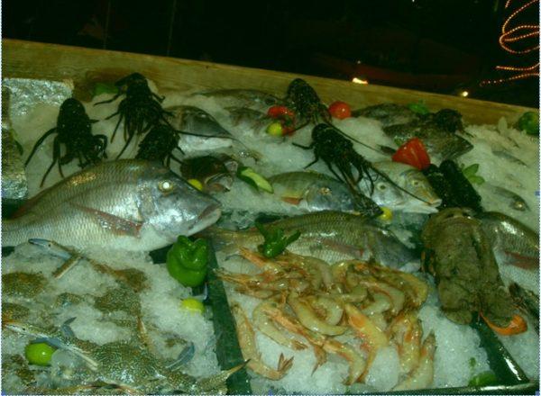 Рыба Дахаба