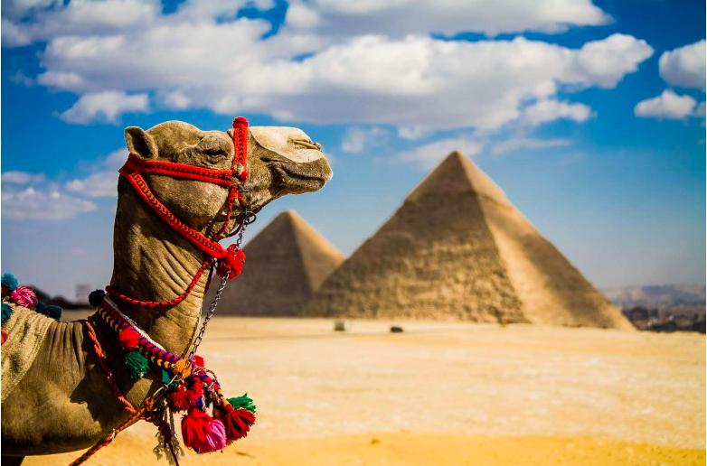 экскурсии Египта